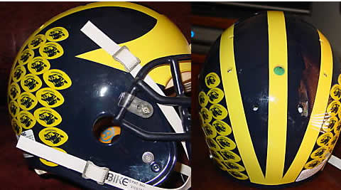 Michigan Helmet decals, stickers