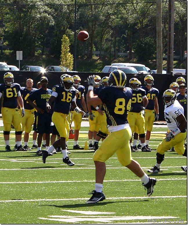 Denard hitting the Tight End