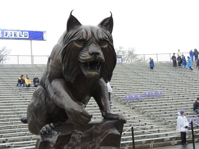 South Endzone Wildcat - Northwestern Ryan Field