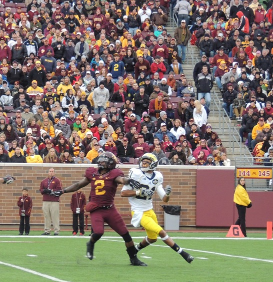Roy Roundtree positions to make catch - 2012 Minnesota