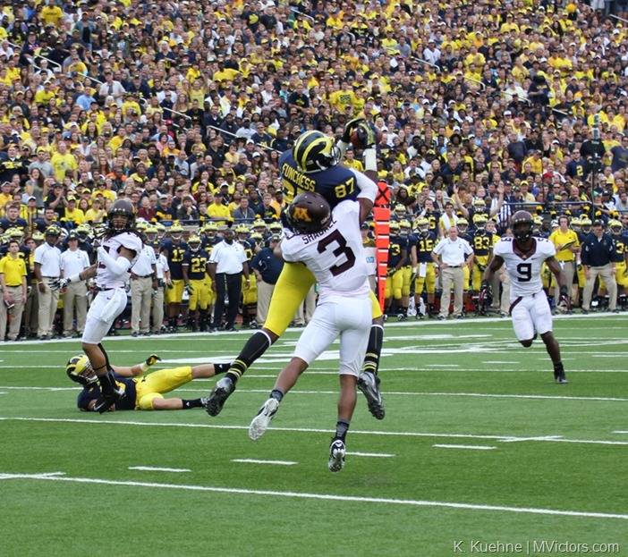 Devin Funchess TD Catch