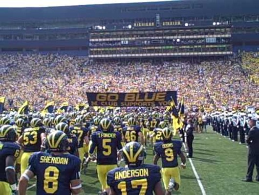GO BLUE banner Michigan