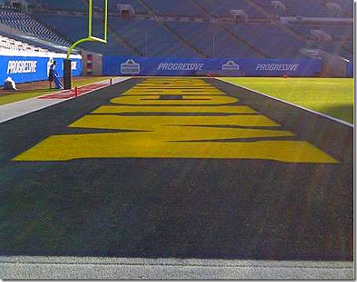 michigan_endzone